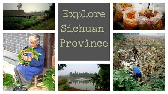 Exploring Sichuan Province – My China Experience 12