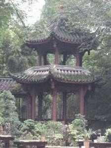 Isn't that mystical? Chengdu Sichuan Province