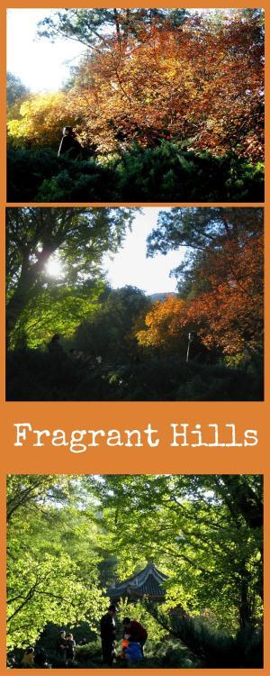 Fragrant Hills Beijing