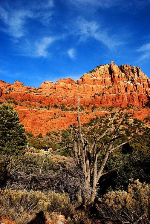 Red Rocks of Sedona, Arizona 7