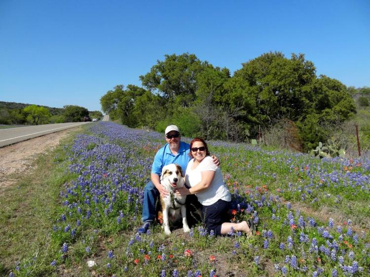 Haase Family Blue Bonnets