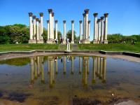 Travel Photography: Capitol Columns Washington DC