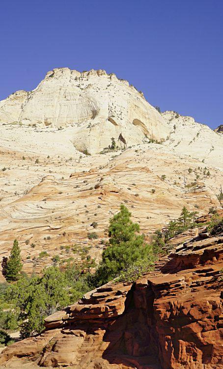 Zion National Park: Beautiful Utah National Park