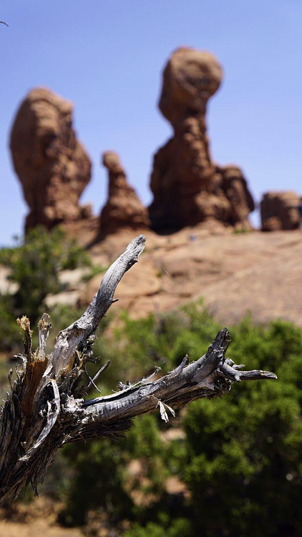 Arches National Park Utah National Parks Beautiful rock Formations