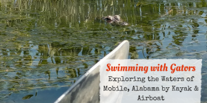 Discovering the Mobile-Tensaw River Delta: Kayaking vs Airboat Ride