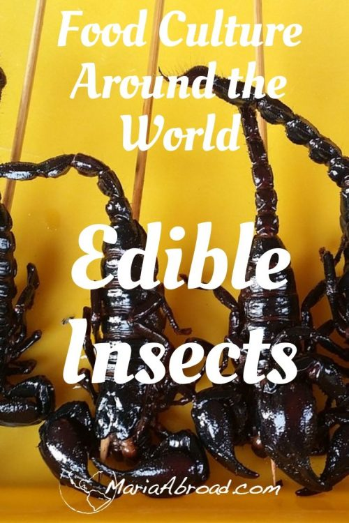 Food Culture around the world: Edible Insects #Food #Culture #Travel #Sustainability #Traveltips #foodsources
