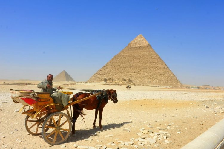 On a bright clear day, a horse drawn cart trudges on toward the Pyramids in the short distance in Egypt