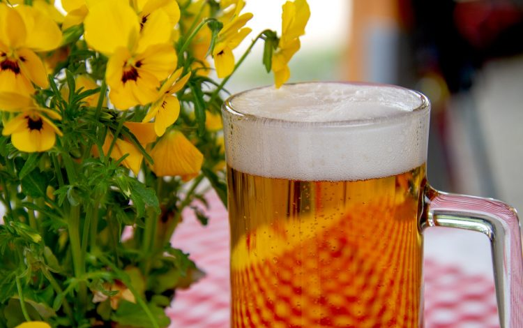 Pint of beer filled to the frothy brim next to lovely yellow stemmed flowers