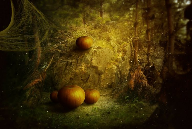 Mystical forest setting with plump pumpkins all around