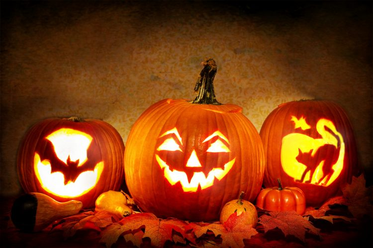 Three pumpkins with a face, a bat, and a cat carved into them